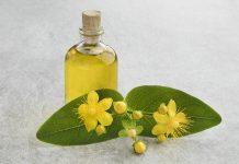 St John's wort flower and oil