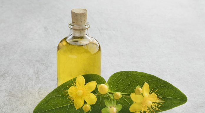 St John's wort flower and oil