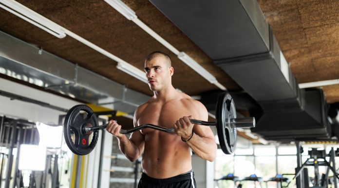 Muscular bodybuilder workout in gym doing biceps exercises